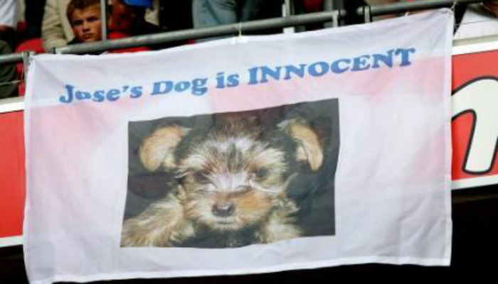 mourinho-dog-innocent